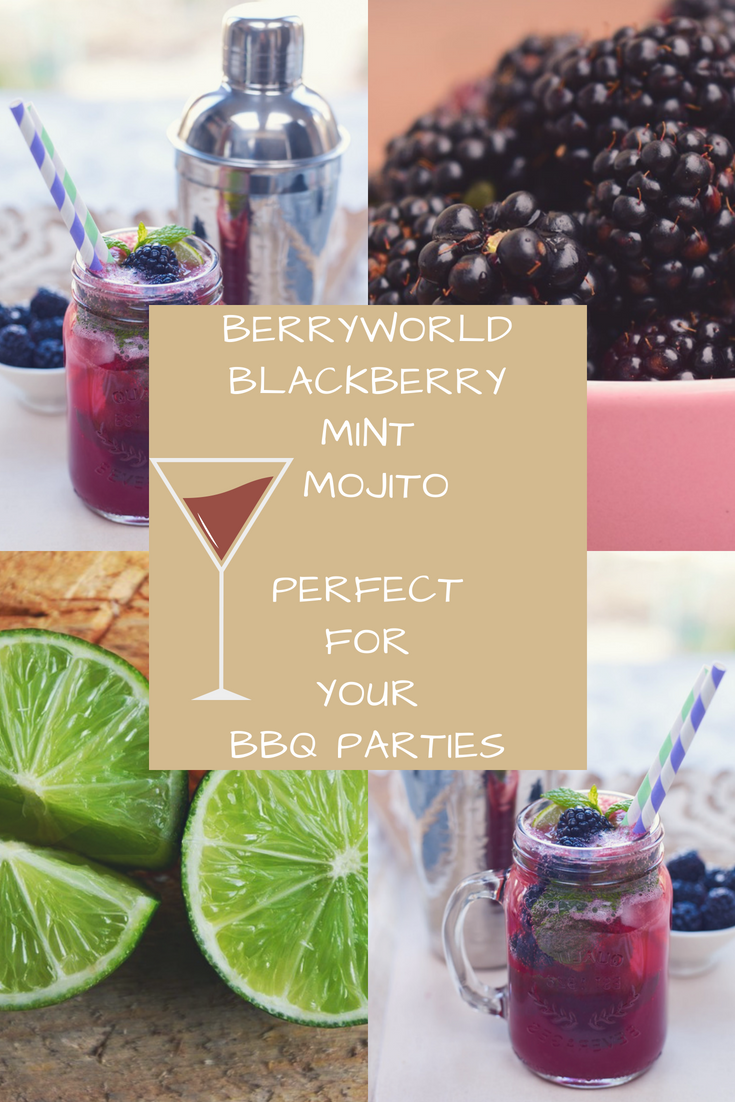 BerryWorld Blackberry Mint Mojito: Perfect For Your BBQ Parties