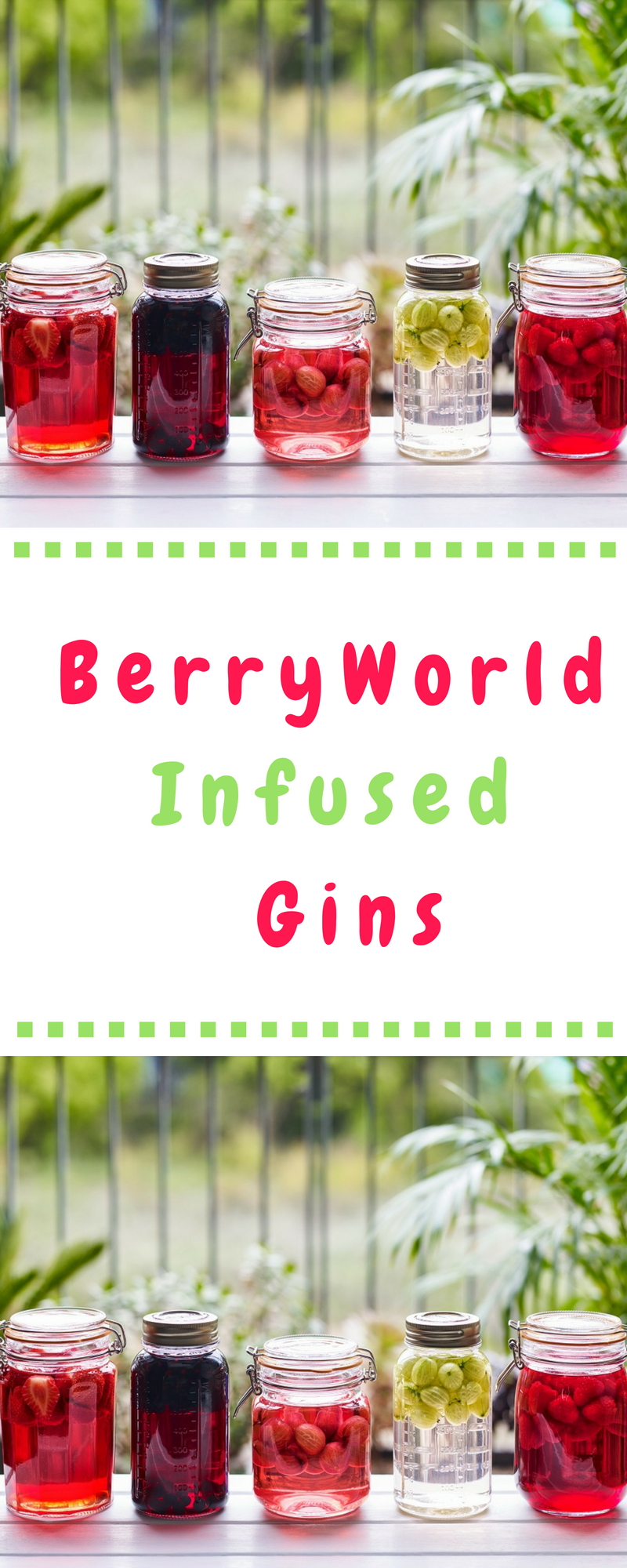BerryWorld Infused Gins