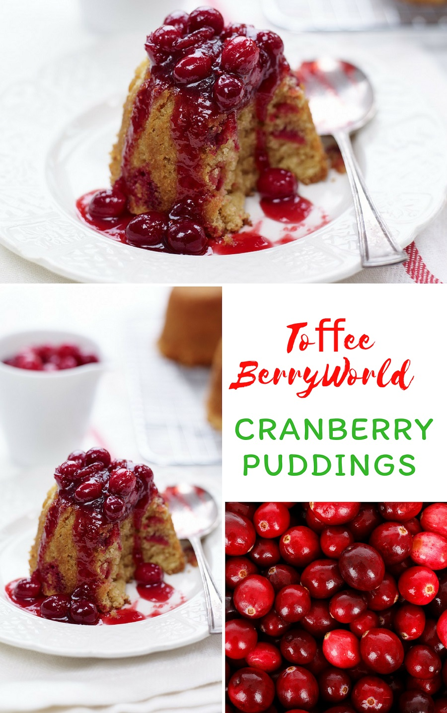 Toffee BerryWorld Cranberry Puddings