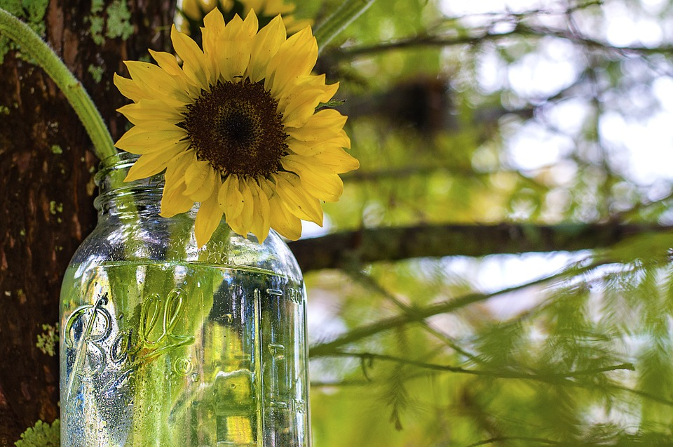 19 Ideas To Use Your Mason Jar: Recycle And Reuse