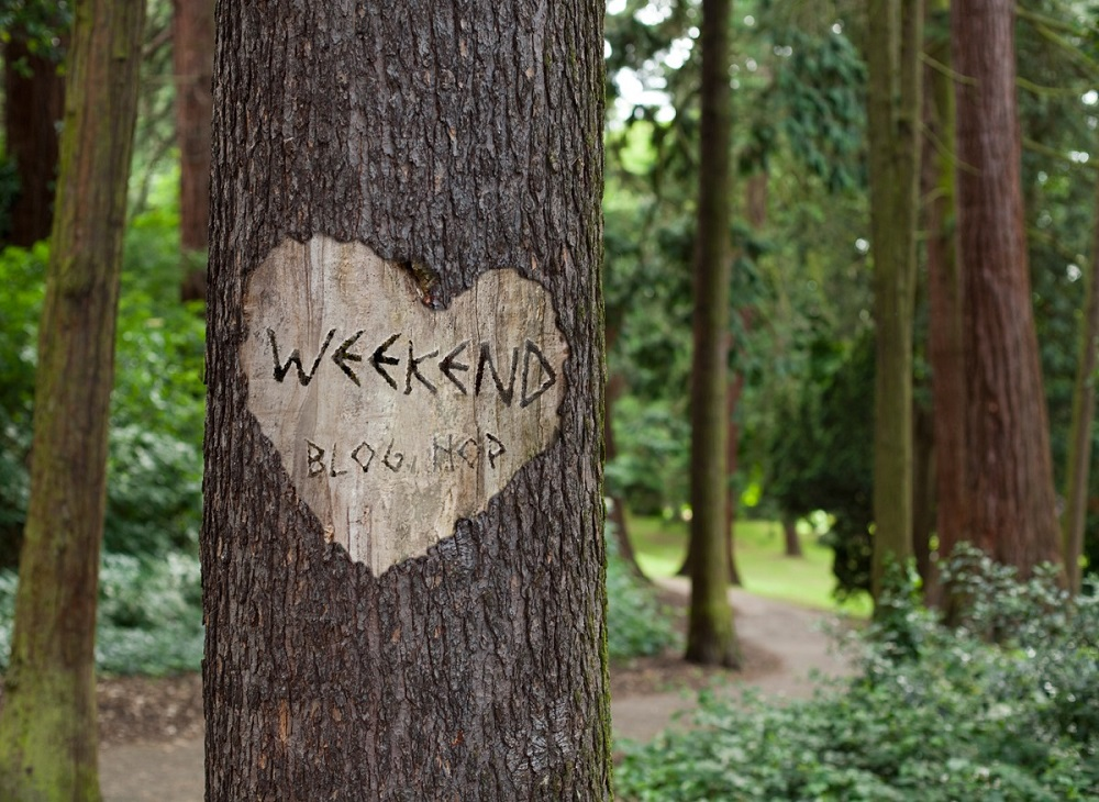 12/07/2019 Welcome To The Weekend Blog Hop