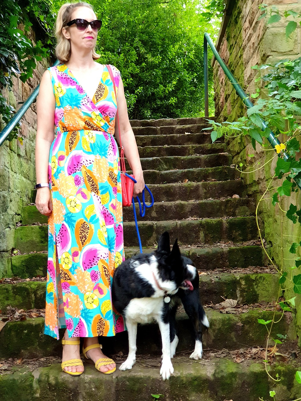 On Our Walk With Mollie The Collie: #WeekendLinkUp