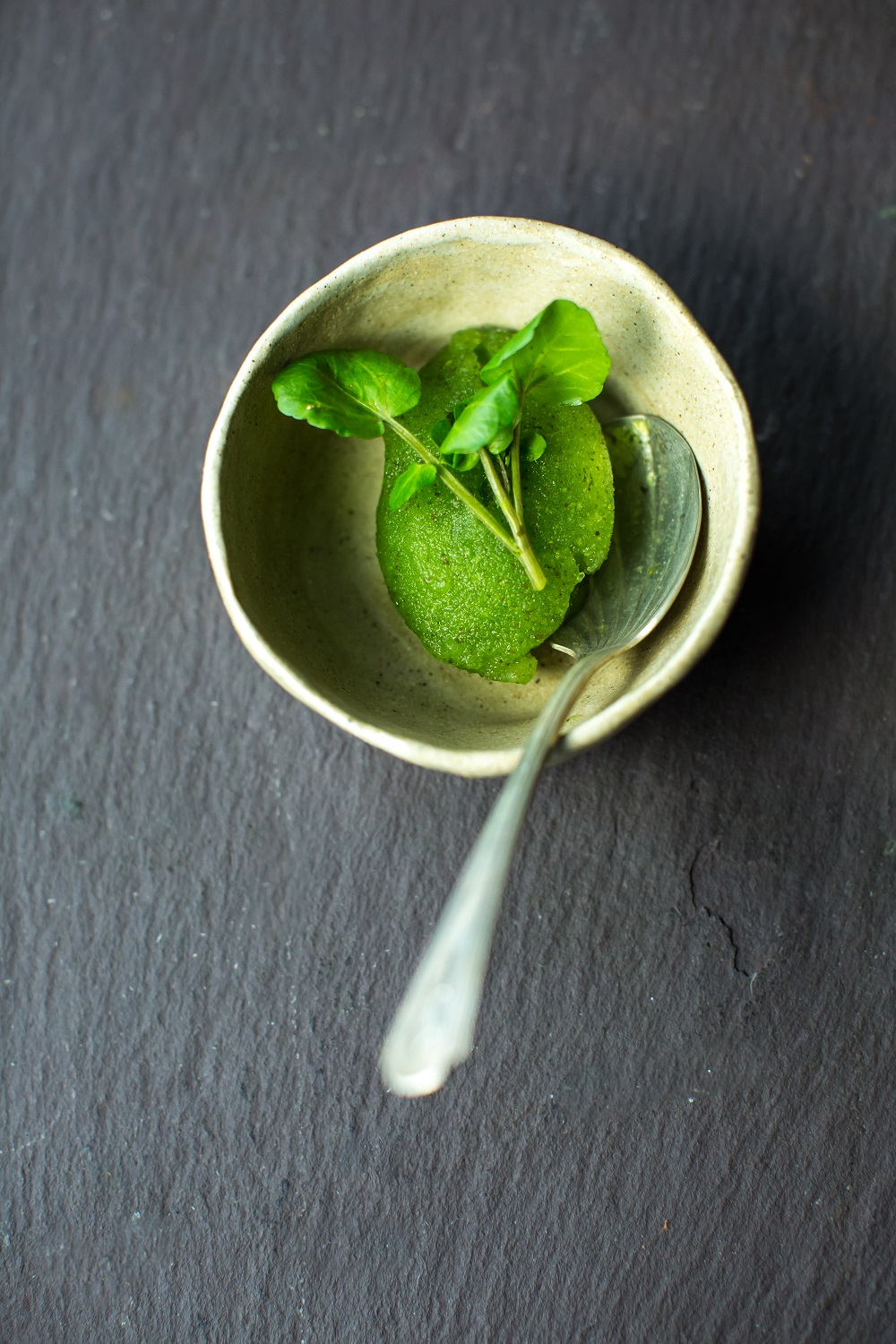 Watercress Sorbet: Give Yourself a Peppery Health Kick this New Year!