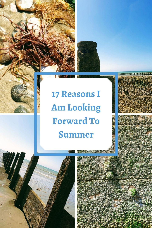 17 Reasons I Am Looking Forward To Summer
