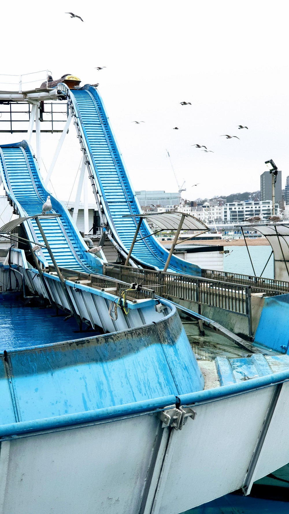 It's A Bit To Windy For The Log Flume Just Yet