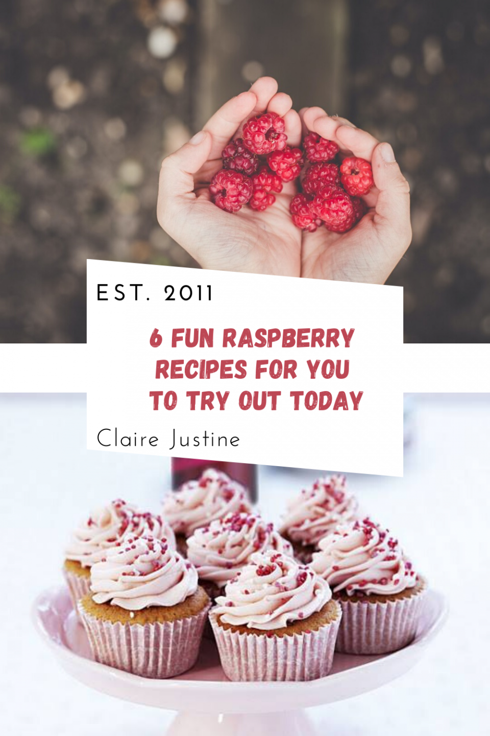 6 Fun Recipes with Raspberry To Try Out Today