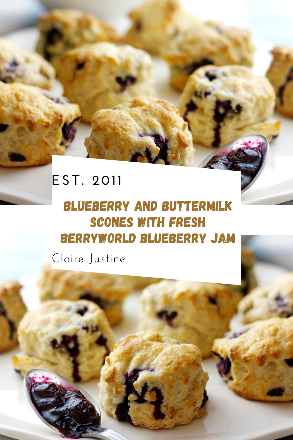 BerryWorld Blueberry And Buttermilk Scones With Fresh BerryWorld Blueberry Jam.