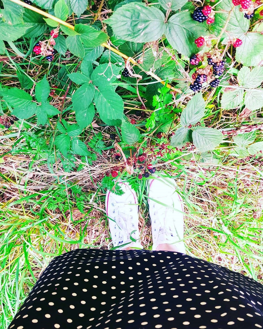 Converse and berries