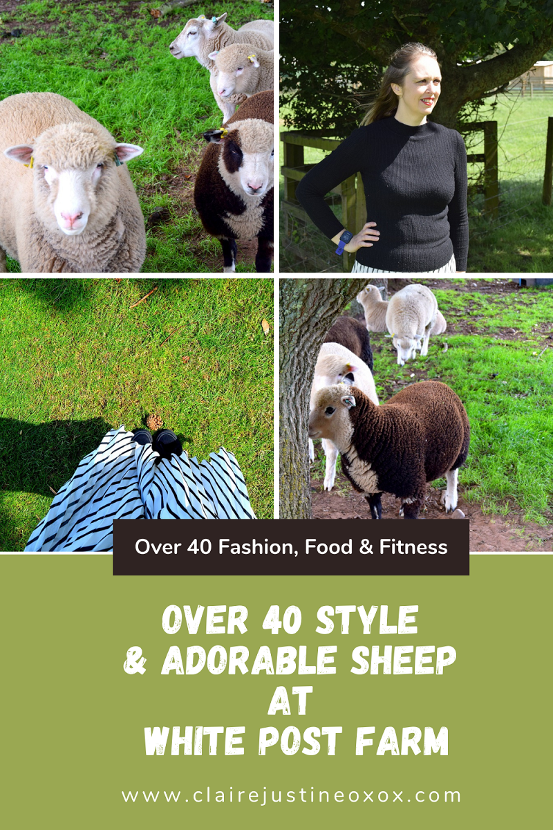 Sheep and fashion