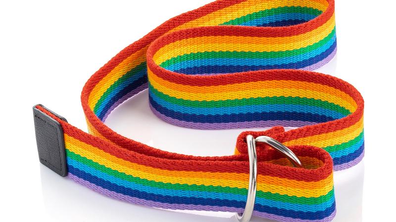 Rainbow Retro Belt