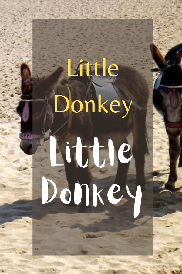 Little Donkey: Wordless Or Not So Wordless Wednesday