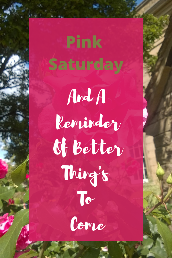 Pink Saturday And A Reminder Of Better Thing's To Come