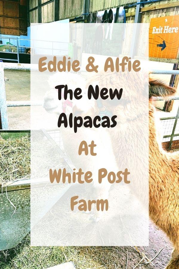White Post Farm: