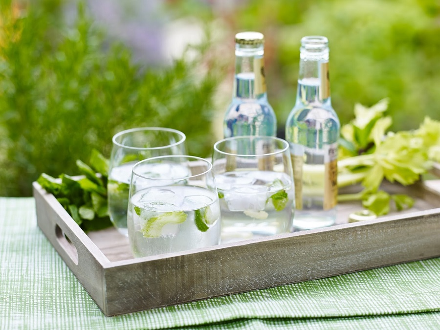 How To Make Celery And Mint Ice Cubes for Vodka