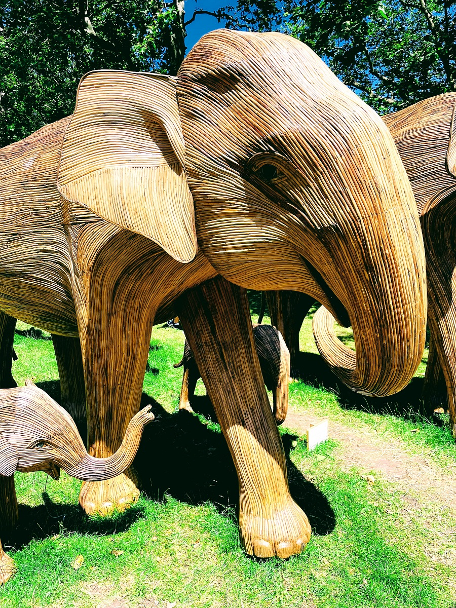 100 Life Size Elephants Spotted In London