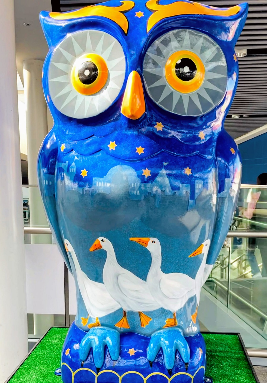 Selfie Saturday With The Owl Trail In Nottingham