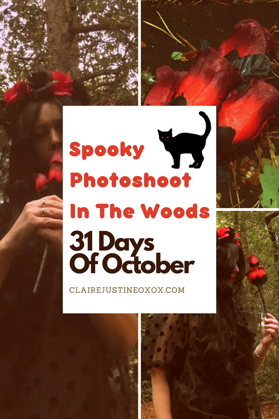Spooky Photoshoot In The Woods 31 Days Of October.